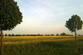landschaftkl.jpg